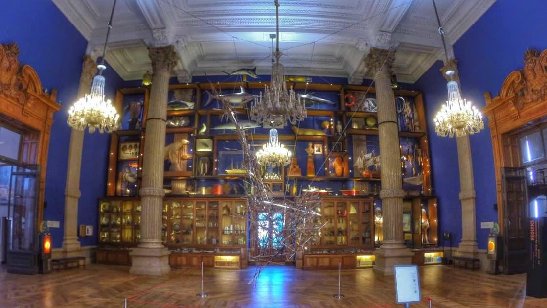 Gabinet ciekawostek w Muzeum Oceanograficznym w Monaco