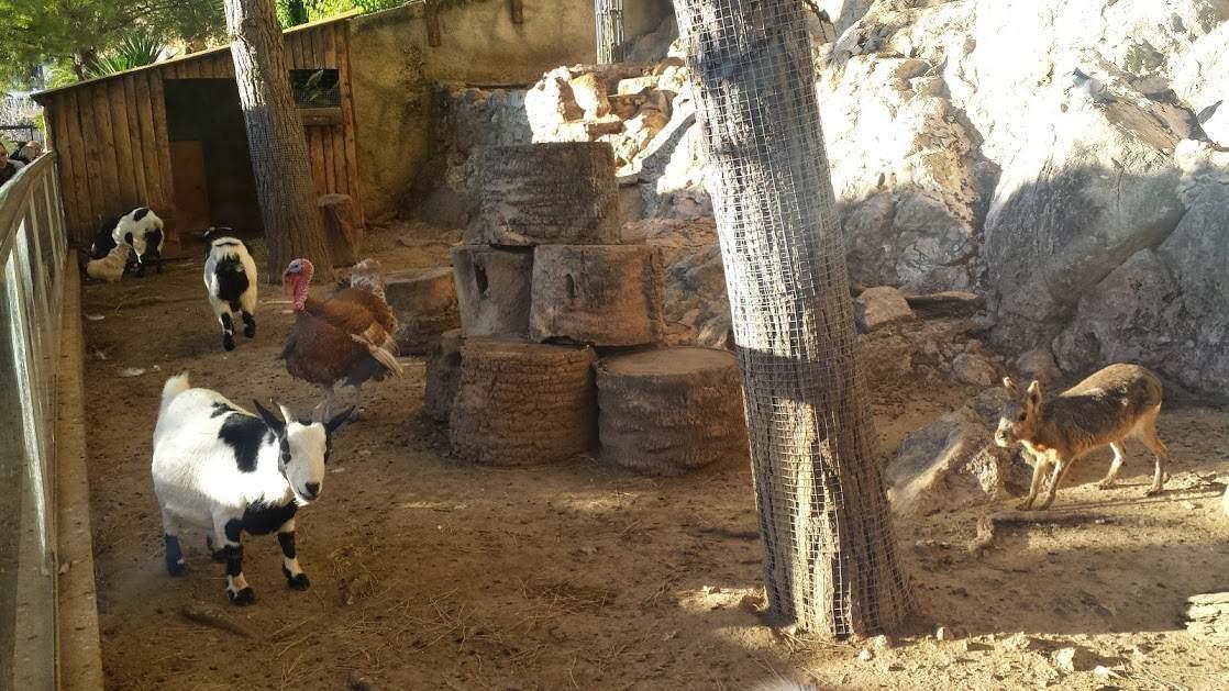 Ogród zoologiczny, Monaco