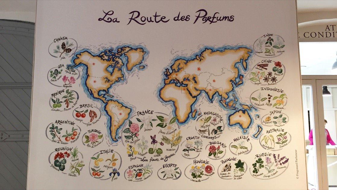 Składniki perfum i miejsce ich pozyskania. Na dole po prawej widać także produkty importowane z Polski.