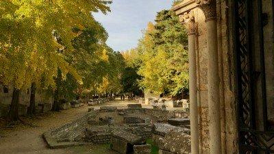Cmentarz Alyscamp w Arles