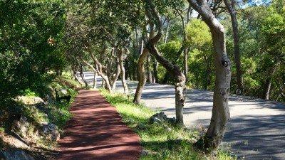 Ścieżka spacerowa w lesie na Mont Boron w Nicei