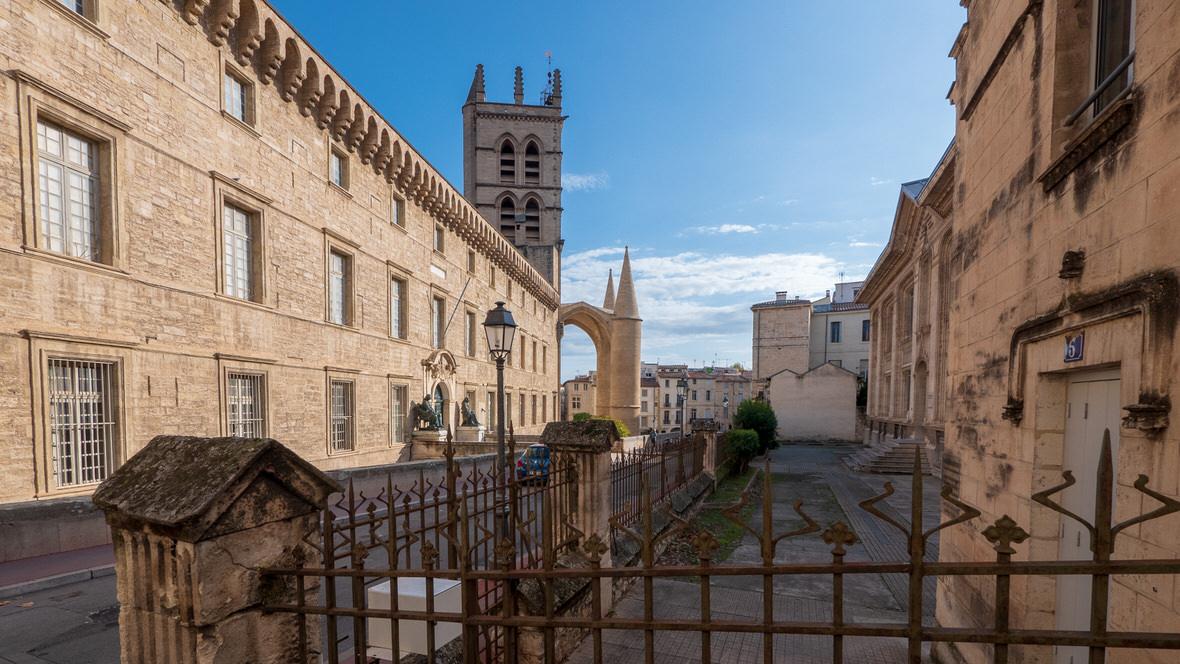 Muzeum Anatomii i Katedra św. Piotra w Montpellier