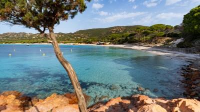 Plaża Palombaggia, Korsyka